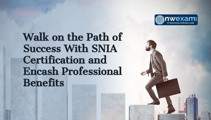 SNIA certification helps to improve career graph